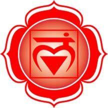 The Base/Root Chakra: Muladhara. Muladhara Chakra, Chakra Healing, Spiritual Symbols, Spiritual Life, Chakra Tattoo, Les Chakras, Chakra System, Spirit Science, Cacti And Succulents