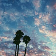 Find images and videos about summer, blue and nature on We Heart It - the app to get lost in what you love. Pretty Sky, Beautiful Sky, Look At The Sky, Doja Cat, Of Wallpaper, Summer Vibes, Palm Trees, Surfing, Scenery