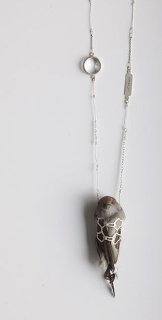 bird in harness - kate gilliland All Things Wild, Uni, Weird, Gems, Draw, Pendant Necklace, Jewellery, Creative, Pretty