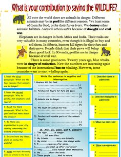 Saving the Wildlife Reading Comprehension - My Reading Kids English English, English Reading, Reading Worksheets, Reading Material, Kids Reading, Reading Comprehension, Clocks, Wildlife, Classroom