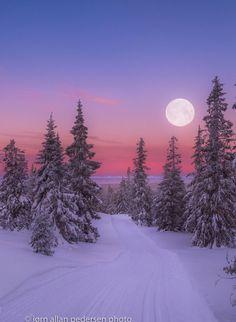 Winter morning by Jørn Allan Pedersen (Norway)
