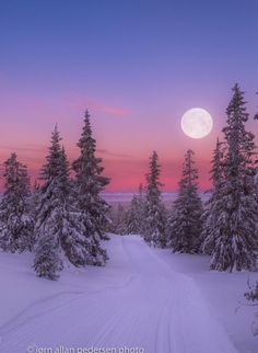Winter morning by Jørn Allan Pedersen (Norway)