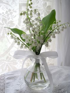 lily of the valley bouquet in clear glass jar, tied with white ribbon. My Flower, Fresh Flowers, White Flowers, Beautiful Flowers, Cactus Flower, Exotic Flowers, Tropical Flowers, Yellow Roses, Purple Flowers