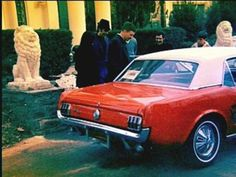 """Elvis Presley, Priscilla Presley, Joseph Beaulieu and Don Beaulieu outside Graceland, Memphis, TN. Elvis bought Don (Priscillas brother) a Ford Mustang 1966 model as a gift. """"Elvis was a very generous person"""" - Joe Esposito. New Ford Mustang, Ford Mustang 1964, Red Mustang, Elvis Presley Priscilla, Lisa Marie Presley, King Of The World, Chuck Berry, Great Love Stories, Famous Couples"""