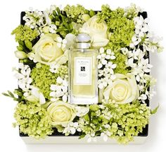 great idea for Mom's Day! a box of fresh flowers and a bottle of perfume. Flower Box Gift, Flower Boxes, Deco Floral, Arte Floral, Love Flowers, Beautiful Flowers, Fresh Flowers, Deco Nature, Unique Mothers Day Gifts