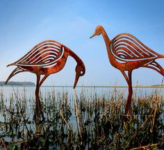 Bird Sculptures, A Pair of Sandpipers, our two designs created after watching the waders on the shore of the local harbour during winter walks. The sculptures are crafted from metal and allowed to rust and would make great garden or pond sculptures. We really like the rich warm hues of the rusted metal finish.
