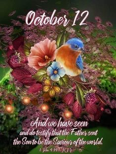 Daily Scripture, Bible Verses Quotes, October Calender, Birthday Fireworks, Good Morning Saturday, Days Of The Year, 1 Year, Thing 1, People In Need