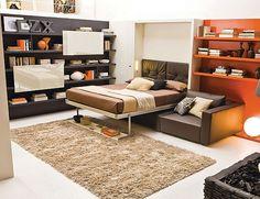 Murphy bed with Sofa Ideas - Decoist