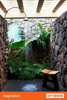 love the bench and surrounding banana plants