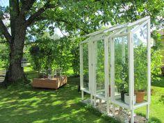 Small Vegetable Gardens, Veg Garden, Garden Cottage, Summer Garden, Home And Garden, Mini Greenhouse, Greenhouse Gardening, Greenhouse Ideas, Moon Garden