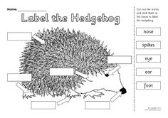 Label the Hedgehog Worksheet (SB11353) - SparkleBox