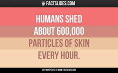 53 Facts about Your Body ←FACTSlides→ Humans shed about 600,000  particles of skin every hour.