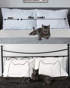 The cat has the deed to your home. And your life.