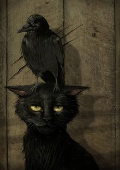 "the raven and the cat (small raven that is. or perhaps the artist is one of those who thinks ""raven"" and ""crow"" are synonymous. Raven, Animal Art, Drawings, Fantasy Art, Cat Art, Illustration Art, Witch, Dark Art, Halloween Art"