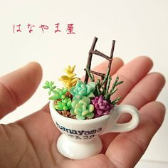 Would be cute in an egg cup Cute Polymer Clay, Polymer Clay Miniatures, Polymer Clay Projects, Polymer Clay Charms, Polymer Clay Creations, Diy Clay, Clay Crafts, Miniature Plants, Cactus Y Suculentas