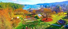 Salt Spring island Harbour House Hotel, Restaurant and Organic Farm Discovery Island, Harbor House, Stay The Night, Organic Farming, Sunshine Coast, Vancouver Island, Canada Travel, Continents, Travel Destinations