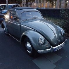 Not a ladybug - Kein Marienkäfer. #VW #Beetle #Bug #Käfer...