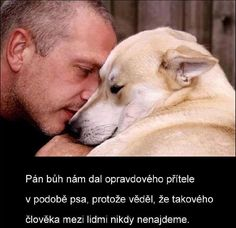 Nature Animals, Animals And Pets, Funny Animals, Dog Quotes Love, Man And Dog, Dreamworks, I Love Dogs, Chihuahua, Favorite Quotes
