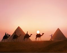 Pyramids tours from Hurghada   Pyramids trips from Hurghada   Cairo Tours from Hurghada   Trips in Egypt http://www.tripsinegypt.com/egypt-day-trips/hurghada-excursions/tour-to-giza-pyramids-saqqara-and-memphis-from-hurghada-by-flight.html http://www.tripsinegypt.com/ Whatsapp+201069408877 Email: Reservation@tripsinegypt.com #egypt_travel #egypt_holidays #travel_to_egypt #tours #trips #travel #egypt #luxury