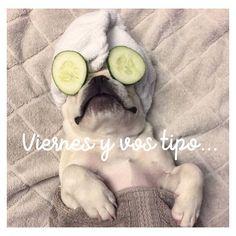 Dicen viernes y vos tipo... Vamo a relajarnooo!  #buendia #felizviernes #humor #dog #relax #viernes #inspirationoftheday #instamood #viernesmood #picoftheday #oyuelitostore