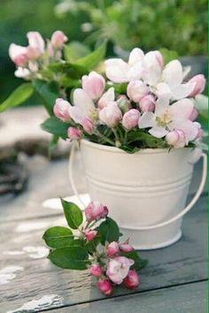 New Flowers Bucket Birthday Garden Parties Ideas My Flower, Fresh Flowers, Spring Flowers, Flower Power, Beautiful Flowers, Spring Bouquet, Deco Floral, Arte Floral, Garden Parties