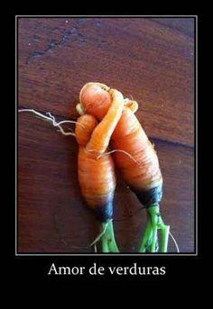 Fotos de humor: Amor deverduras. Fotos divertidas y humor para tu facebook. Galería de Imagenes para compartir en Facebook, Twitter, Google+.