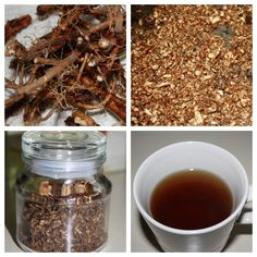 "Dandelion ""Coffee"" grind the roots, roast, and filter. #Herb coffee alternative drink recipe."