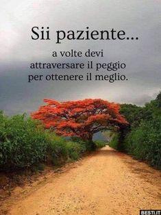 Italian Phrases, Italian Quotes, Motivational Quotes For Life, Life Quotes, Inspirational Quotes, Love Pain, Sense Of Life, Italian Language, Life Motivation