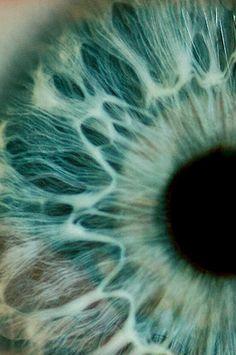 Iris/ Ojo humano