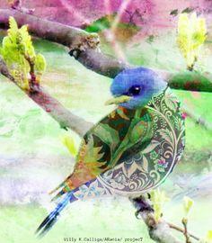 bird ( v.1) / illustration /Villy K.Calliga_ARania projecT