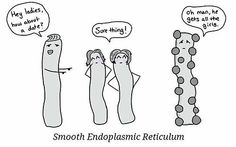 i personally find protein synthesis to be exceptionally hot quality KEEP THE FAITH MAN lol
