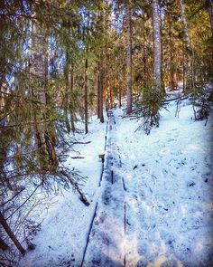#europe  #instafinland  #nurmijärvi  #travel  #alltags_member  #traveling  #loves_finland  #finnishboy  #finland_photolovers  #landscape_lovers  #finland4seasons  #travelphotography  #instatravel  #finland_frames  #igscglobal  #fotofanatics_nature_  #thisisfinland  #discoverfinland  #igscandinavia  #ig_week_finland  #Loves_United_Finland  #fotofanatics_alltags_  #finnishmoments  #lovelyfinland  #thebestoffinland  #nature  #visitfinland  #unlimitedscandinavia  #beautyofsuomi  #finland_online