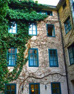 Hostel Wien - Myrthengasse (HI) in Vienna, Austria - Lonely Planet Hostel, Lonely Planet, Planets, Vienna Austria, Travel, Trips, Viajes, Traveling, Plants