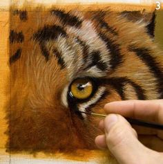 "UPDATE 13th May 2013 As promised I have listened to your opinions and just completed my brand new eBook packed full of ADVANCED fur painting techniques and tutorials. The eBook is called ""How…"