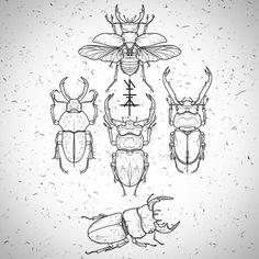 praythewolves: Adopt. Nancy / Lyon / Toulouse / Paris / Lille / Rouen / Dunkerque… Nealpanda.tattoo@gmail.com #tattoo #tatouage #tattooflash #flash #insect #coleoptera #scarab #beetle #blackwork #dotwork #lovettt (à De L' Encre Et Des Trous)