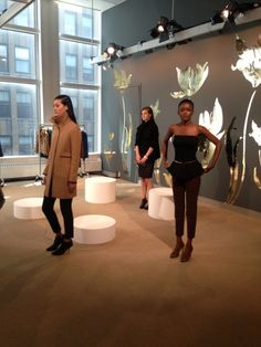 Ann Taylor press preview- hair by Leon Gorman for Cutler Salon.