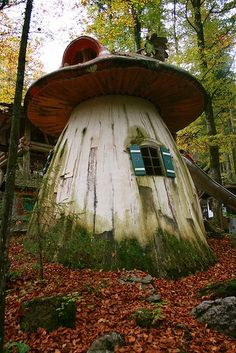 Ok, it is not a #treehouse, but it is near trees:)) and it looks like a gr8 play house