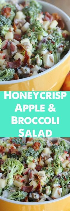 A lightened up twist on a family favorite recipe. Crunchy Honeycrisp apples are paired with broccoli, sunflower seeds, raisins and bacon—a perfect dish to bring to a cookout or party! A lightened up twist on a family favorite recipe. Apple Broccoli Salad, Apple Salad, Broccoli Salad Recipes, Broccoli Salad With Raisins, Great Recipes, Favorite Recipes, Honeycrisp Apples, Cooking Recipes, Healthy Recipes