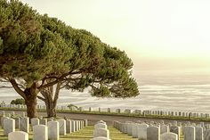 Fort Rosecrans National Cemetery.  Photo Print for Purchase.  #buyart #buyprints #photography #decor #giftideas