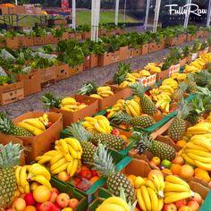 An AMAZING day at Rawfullly Organic! www.rawfullyorganic.com