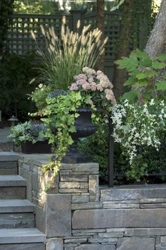 Seasonal Containers | Jean Brooks Landscapes
