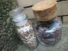 shark teeth jars