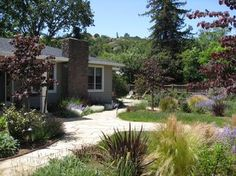 Landscape Designer, San Anselmo, Dig Your Garden creates beautiful, eco-friendly landscapes and garden designs for Marin County and SF Bay area residences. Specializing in drought tolerant CA native and Mediterranean plants.