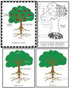 2 pages. Use the labeled tree poster as an anchor chart, use the blank one as an assessment tool. This FREEBIE is part of my jumbo 83-page 4 Seasons O...