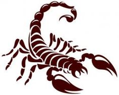 The Story of The Scorpion Tattoo