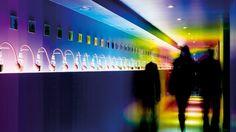 House of Bols, Amsterdam. Hier wordt sterke drank verkocht. Deze ruimte is ingericht op zintuigen en heet de zogenaamde experience room; je kunt er ruiken, voelen, horen en zien.