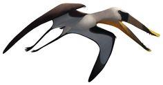 Istiodactylus by Julio Lacerda