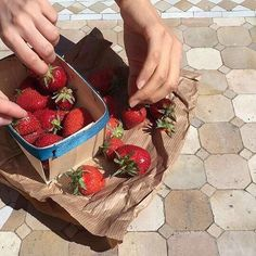 fruit, strawberry, and aesthetic image Aesthetic Food, Pale Aesthetic, Aesthetic Pics, Cravings, Nom Nom, The Best, Strawberry, Food And Drink, Tasty
