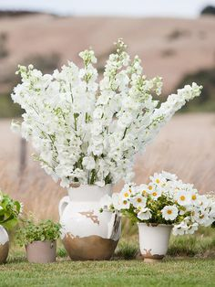 Place soft florals in clay pots for rustic flower arrangements that correspond to the country tone of the wedding ceremony.
