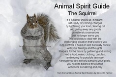 squirrel .... I'm not native, and I don't want to offend (I didn't catch which native nation believes what's written here), just thought this was introspective when out in nature, and neat to teach children old ways and respect